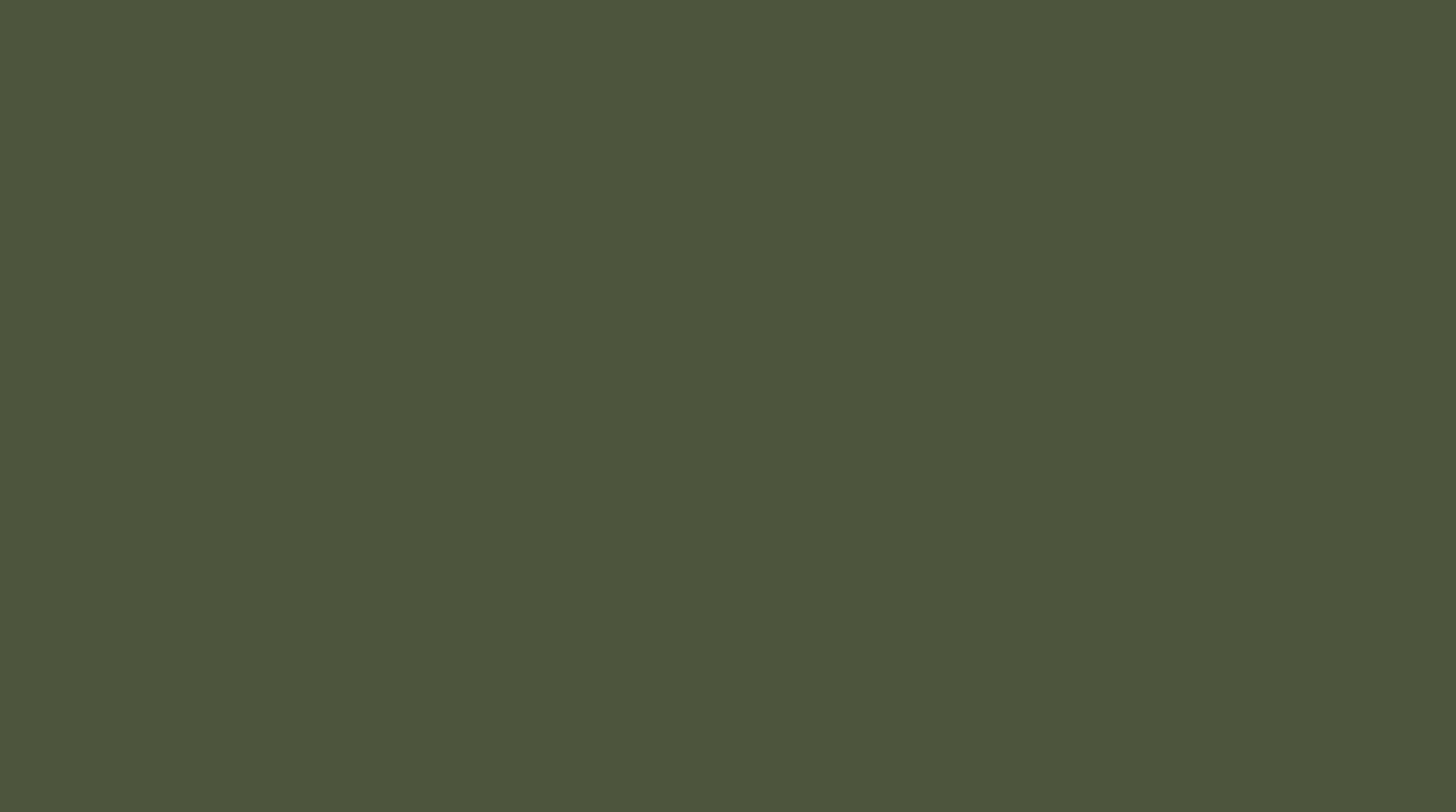 Ral 6003 Olive Green Polyester Rough Texture Glossy Your